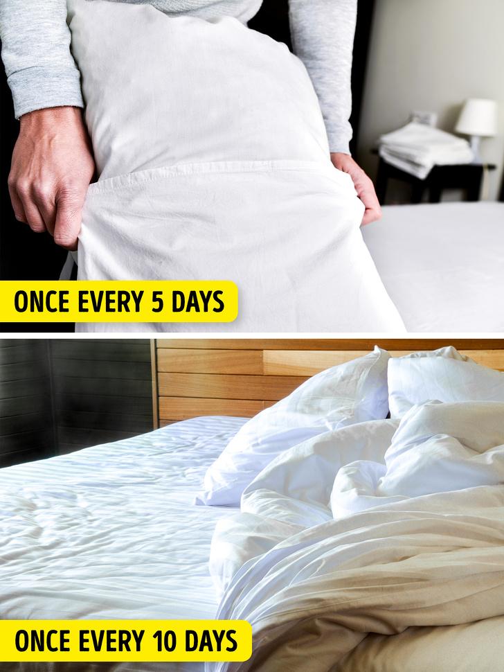 Gối và ga trải giường