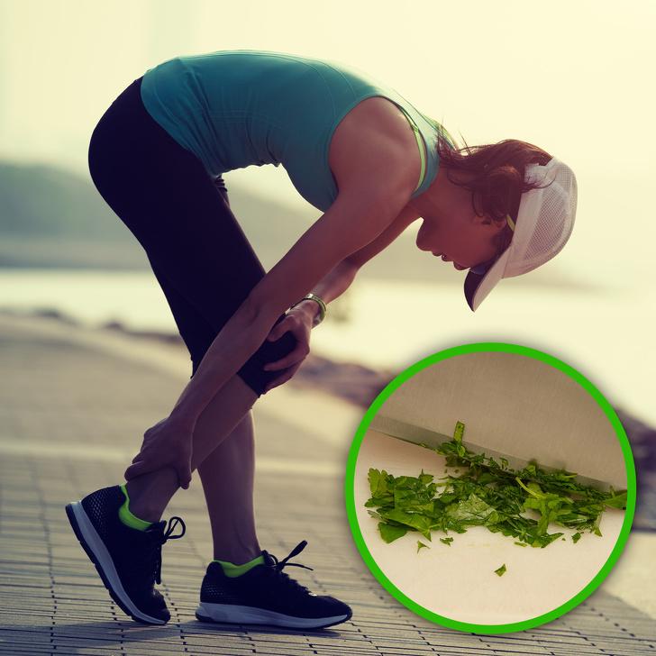 Cây ngò tây giúp tăng cường sức khỏe