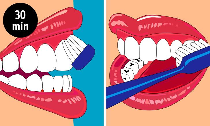 Tránh đánh răng sau bữa ăn sau 30 phút